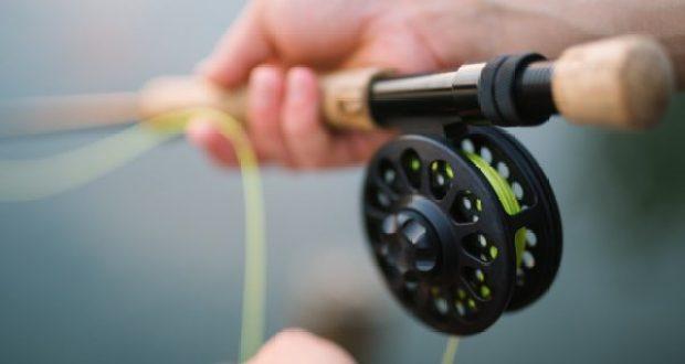 С 1 ноября в акватории порта Ялты и вдоль набережной вводят запрет на ловлю рыбы