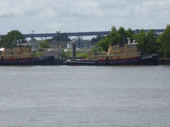 Some Tug boats