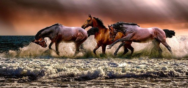 Βαστάτε, Τούρκοι, τ' άλογα (Δημοτικό)
