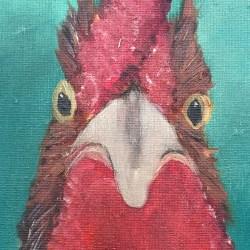 Birds mad hens2