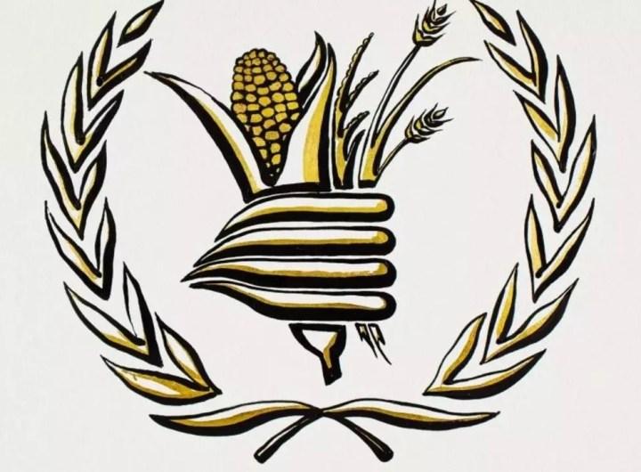 prix-nobel-de-la-paix-au-pam-programme-alimentaire-mondial