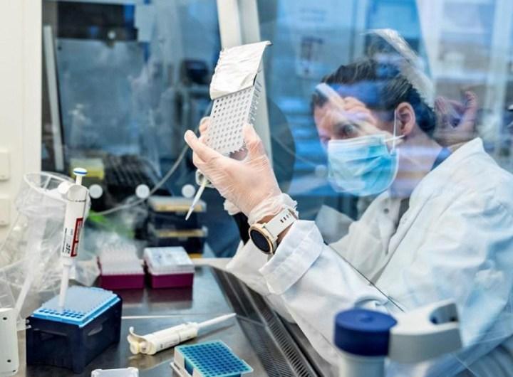 variants-contagieux-le-comite-d-urgence-de-l-oms-reclame-plus-de-sequencage