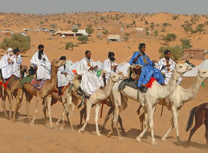 """Début du Festival """"chameau et patrimoine"""" d'Akjoujt"""