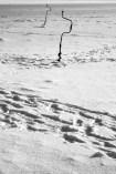Ice Fishing - TECHNIQUE