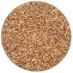 All Grain Kits