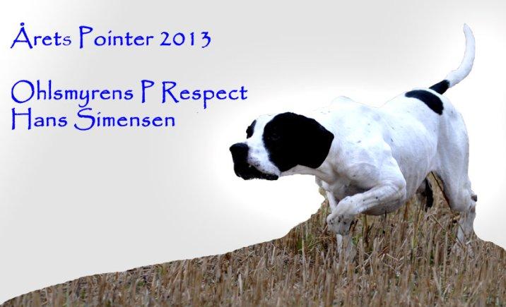 Ohlsmyrens P Respect, Årets Pointer 2013
