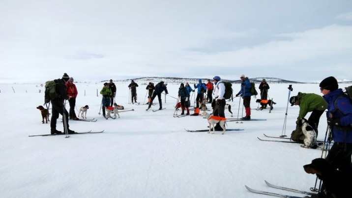 Fra kvalitetsparti i Arctic Cup