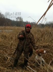 охота собак людей