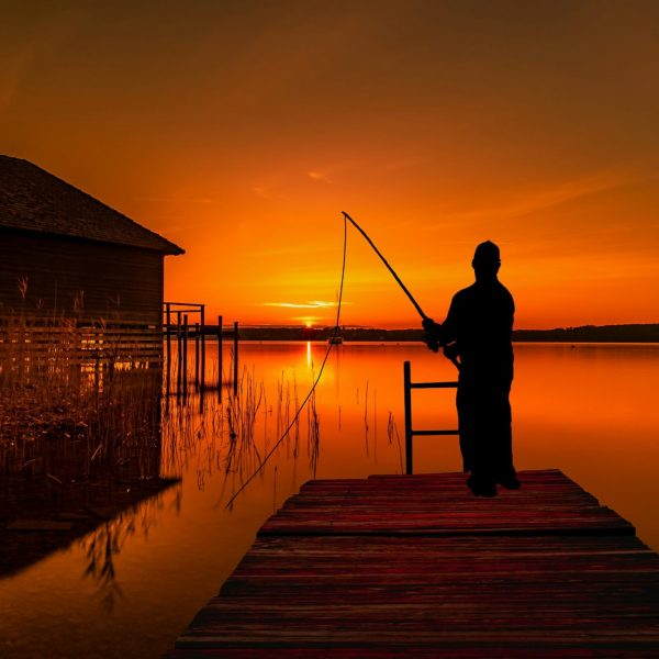fishing-night-pointers-travel