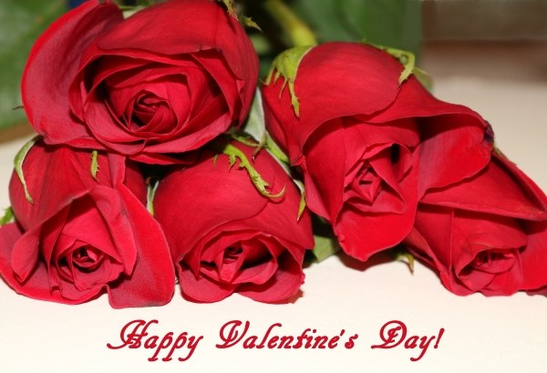 happy-valentines-day-red-roses-pointers-travel