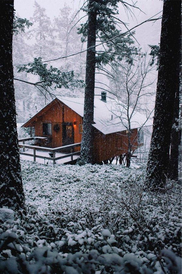 La Cabane Au Fond Des Bois : cabane, Cabane, Bois…, Plumes,, Pointes,, Palettes, Partitions