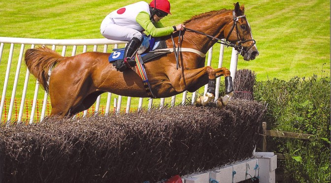 Preview: Torrington Farmers Point-To-Point, Chapelton Barton, Near Umberleigh, North Devon, Saturday 16th June 2018