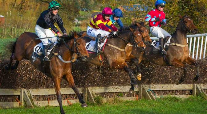 FEATURE:  Clerk of Course at Black Forest Lodge Track, Kenton, Exeter