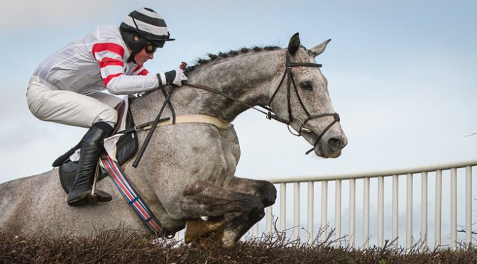 RESULTS: EAST DEVON POINT-TO-POINT AT BISHOPS COURT – 5 MAR 2016