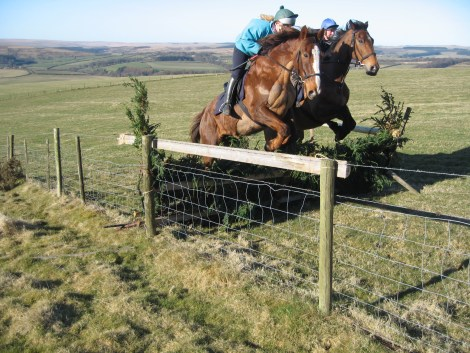 Fred & Archie riding work: Five feet high and 35mph?