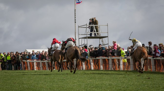 Report: East Cornwall Point-To-Point, Great Trethew, 8th March 2020