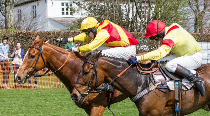 Point-to-Point Meeting to be held at Cherrybrook over the Easter weekend