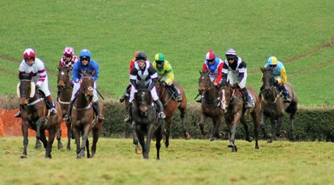 Entries: Bishops Court Racing Club Point-To-Point, Bishops Court, Ottery St Mary, Sunday 19th November 2017