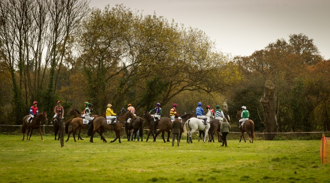 GRANVILLE'S BETTING GOSSIP: BISHOPS COURT RACING CLUB AT BISHOPS COURT, OTTERY ST MARY 20TH NOVEMBER 2017