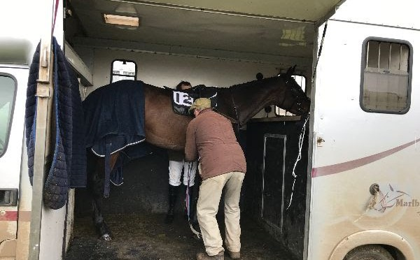 PPA: Procedures to be carried out at point-to-points in respect to Equine Influenza Precautions (21st Feb update)