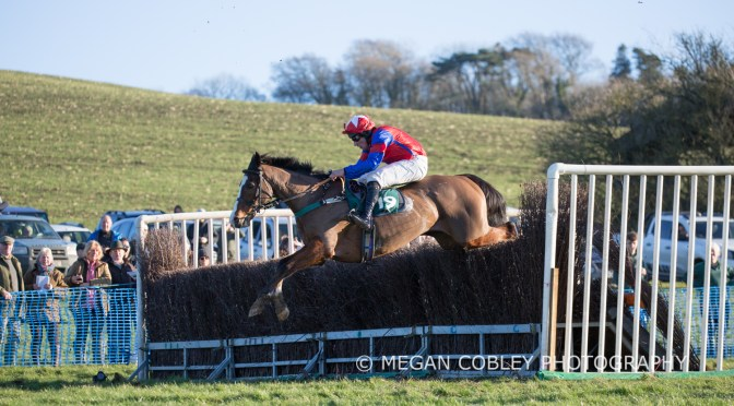 Granville's Betting Gossip: Modbury Harriers Point-To-Point at Buckfastleigh on Sunday 19th January 2020