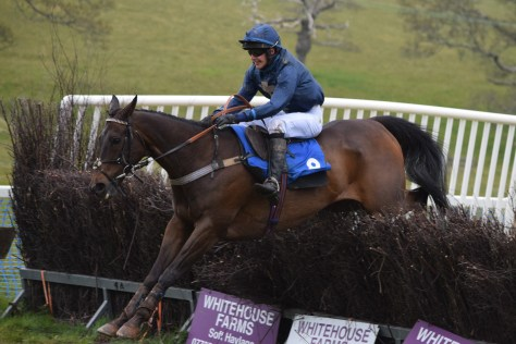 Otis Morgan jumping the last on Skylander to win the win the Artemis Morgan Happiest When Hunting Devon and Cornwall Novice Riders Conditions race