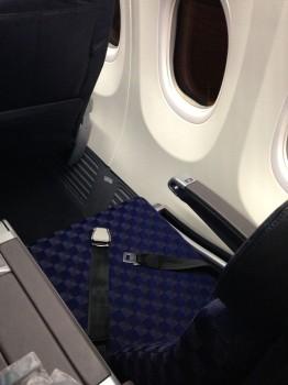 AA 737-800 Sky Interior05