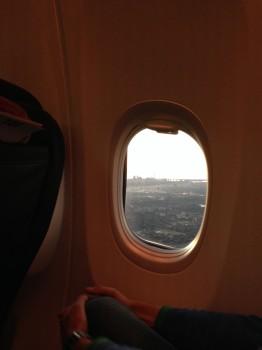 AA 737-800 Sky Interior13