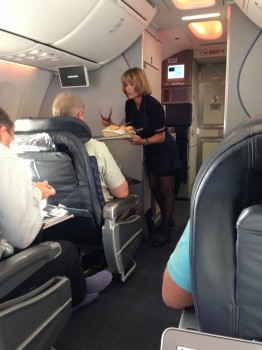 AA 737-800 Sky Interior23