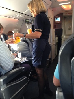 AA 737-800 Sky Interior25