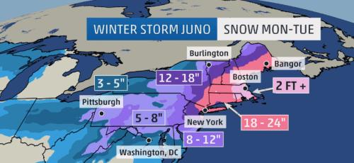 Blizzard 2015 Juno