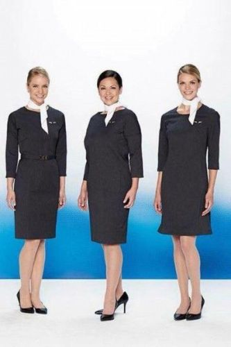 AA flight attendants