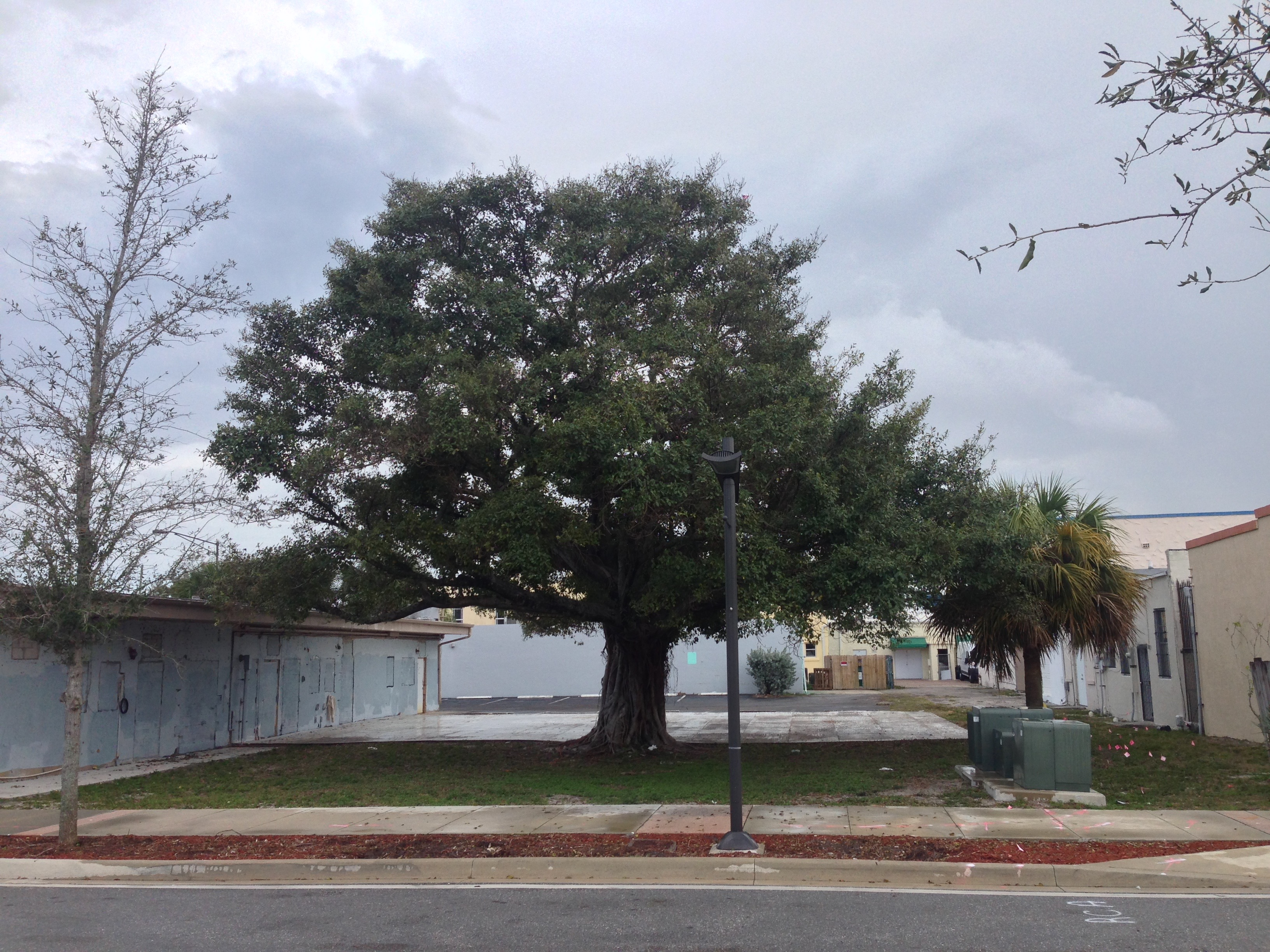 Site of The Backyard public plaza as it exists today.