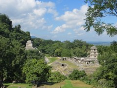 Temple of the Inscriptions and El Palacio
