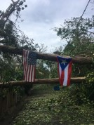Resilience through Hurricane Maria