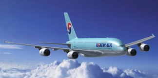 Korean air dan Asiana Airlines