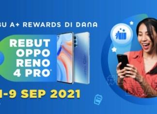 A+ Rewards DANA