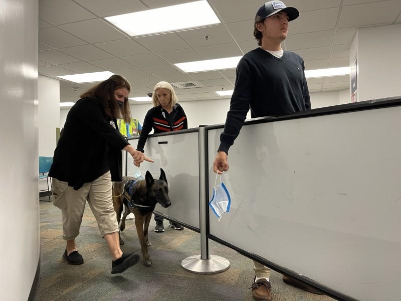 Bandara MIAMI Amerika Serikat tes covid pakai Anjing