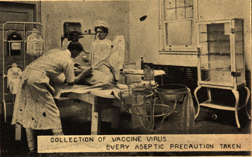 Mulford Vaccine Virus Collection