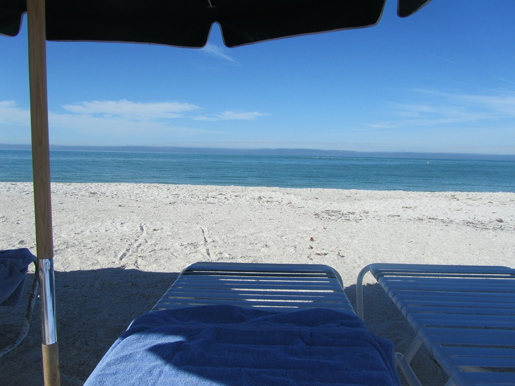 short beach chairs stool chair costco hyatt bonita springsmost underrated points