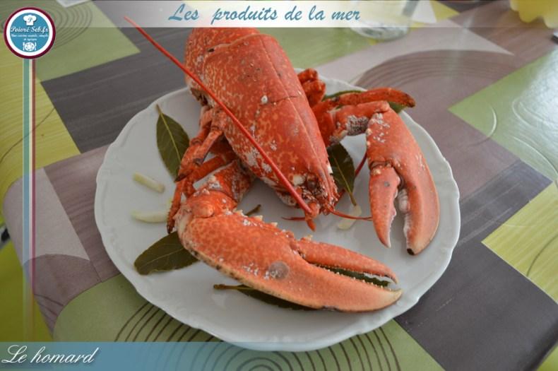 Le homard_3