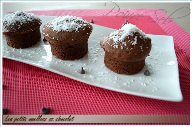 Les petits moelleux au chocolat 3