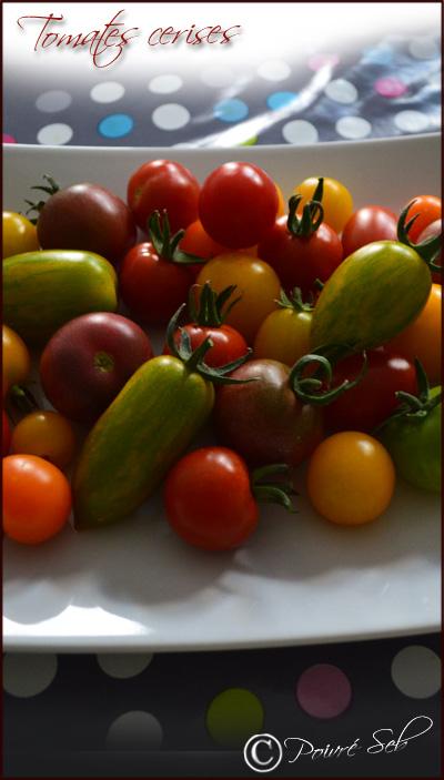 les-tomates-cerises-multicolores