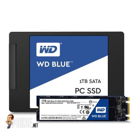 wd-ssd-blue-1