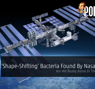 'Shape-Shifting' Bacteria Found By Nasa On ISS - Are We Really Alone In The Universe? 24