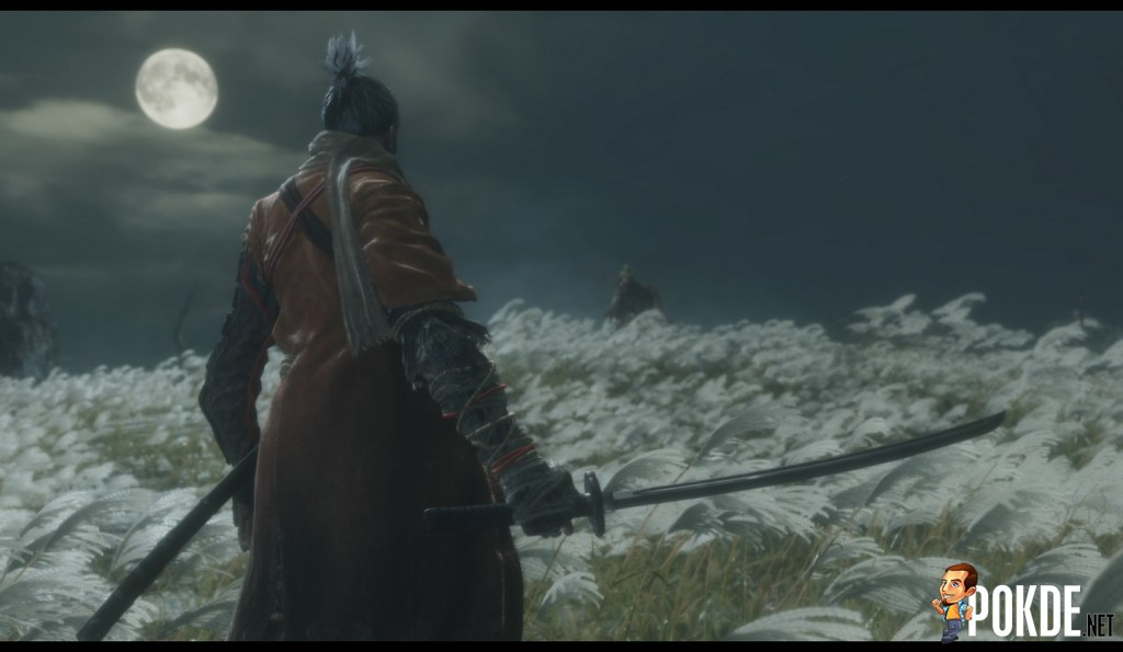 What is Sekiro: Shadows Die Twice About?
