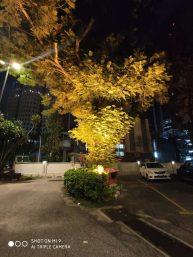 Xiaomi Mi 9 Night Mode (Lights)