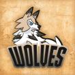 Logo do grupo Wolves C