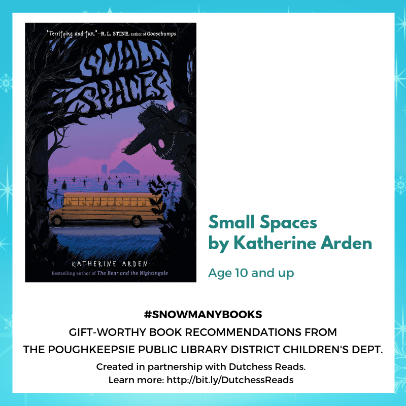 Small Spaces by Katherine Arden (10 and up)