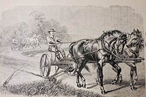 Mowing scene from Adriance, Platt & Co catalog - LH 974.733